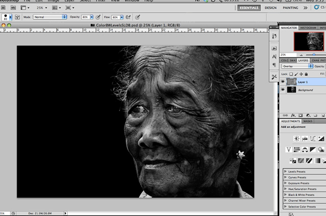Black and White Photoshop Conversion Technique