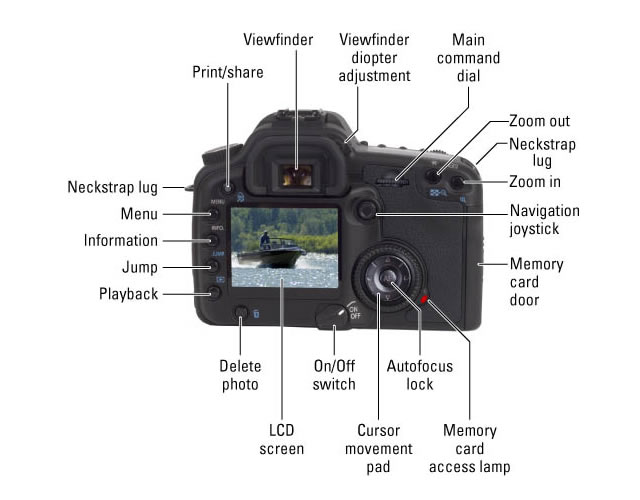 DSLR Camera Controls on the Back