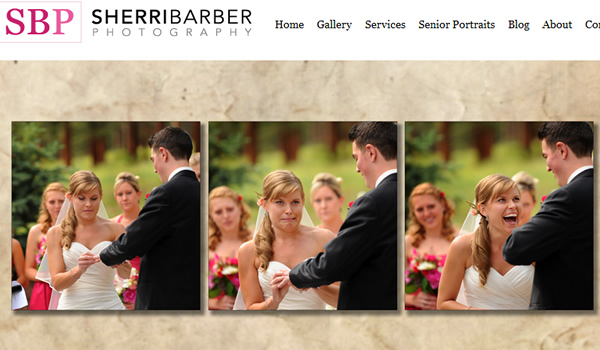 Sherri Barber Photography - The Best Photographer Portfolio Websites for Inspiration