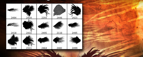 15 Wicked Wings Brush Pack