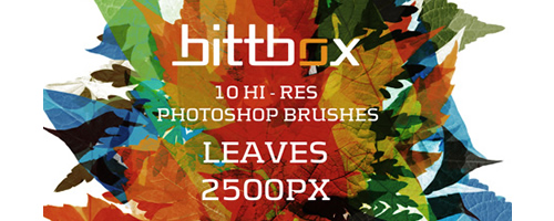 Free High-Res Photoshop Brushes – Leaves