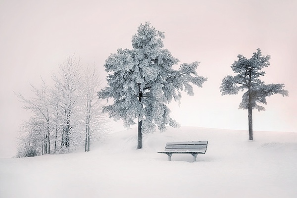 Showcase of the Week - Mikko Lagerstedt