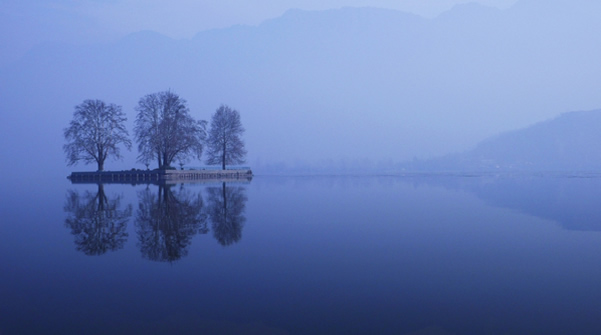 Lake - Srinagar, Kashmir, India