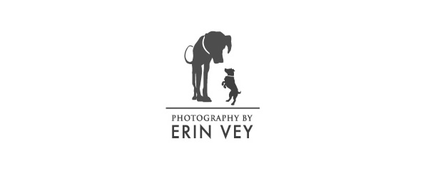 23) Inspiring Collection of Photography Logo Designs