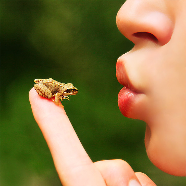 Kiss Me - Humorous Photography