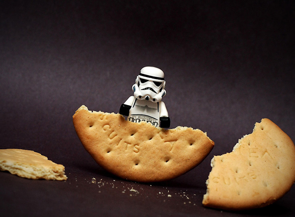 Cookie - Humorous Photography