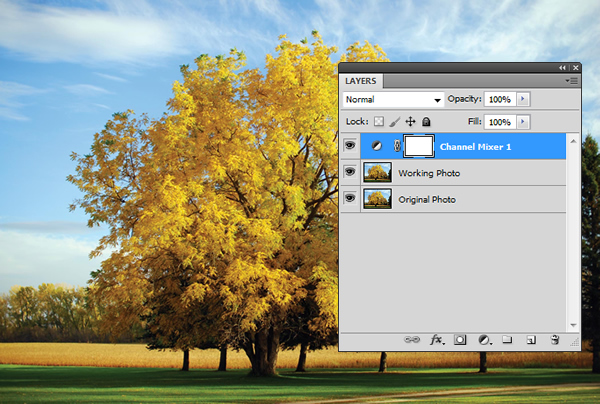 Creating an Infrared Photo Effect in Photoshop CS5