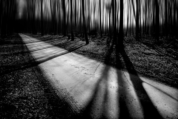 Showcase of Fineart Photographer Chris Friel