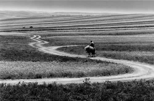 Roads of Kiarostami (2006)