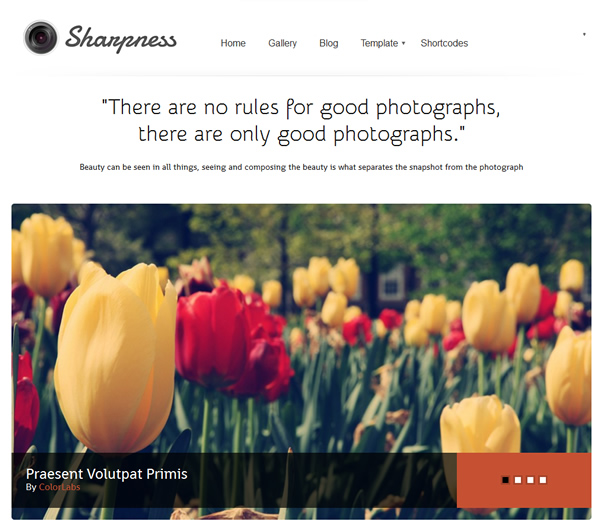 Sharpness Photograpy Responsive WordPress Theme