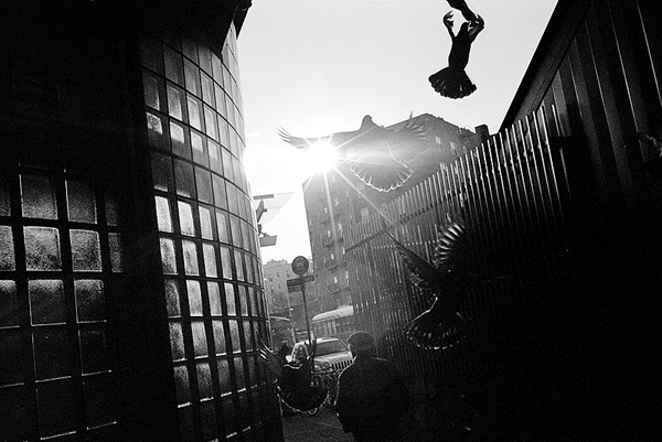 Kramer O'Neill - The Best Street Photographer Portfolios for Inspiration