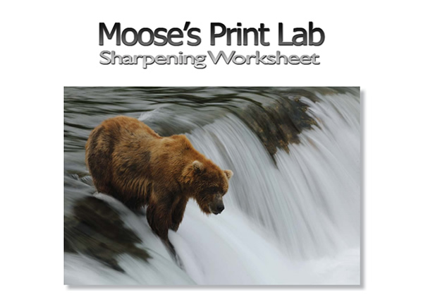 Moose's Print Lab - Sharpening Worksheet