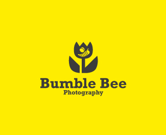 Bumble bee photography