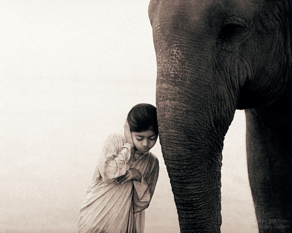 Ashes and Snow by Gregory Colbert