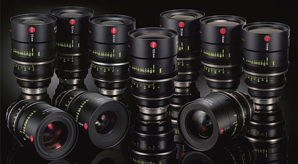 Top 3 Prime Lenses every photographer should have