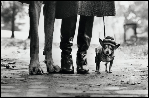 Interview with Elliott Erwitt by Professionaal Photogrpher