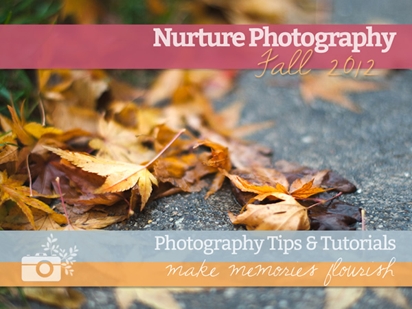 Nurture Photography - Photography Tips & Tutorials