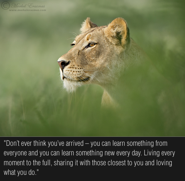 Interview with Wildlife Photographer Morkel Erasmus