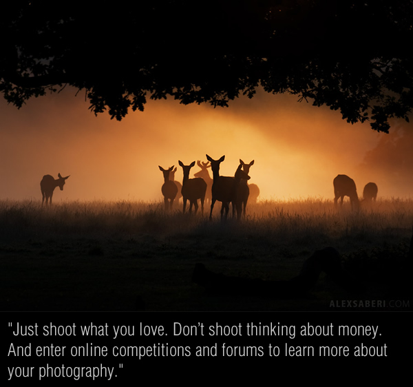 Interview with Nature Photographer Alex Saberi