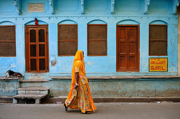 Walking woman and dog - Indian Color Street Photography