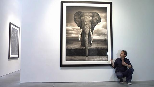 Nick Brandt - Inspiration from Masters of Photography