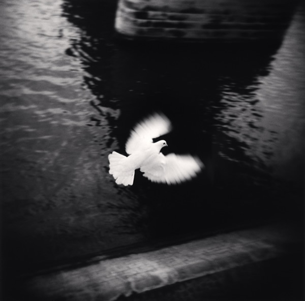 An Interview with Michael Kenna by Holga Direct
