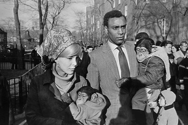 An Interview with Garry Winogrand by Barbara Diamonstein