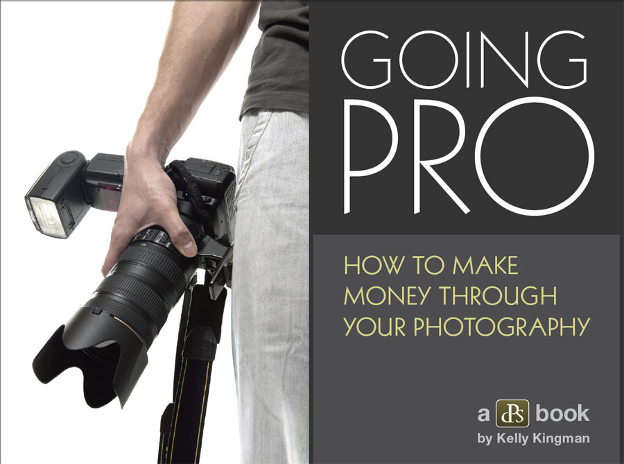 Going Pro - How to make money through your photography