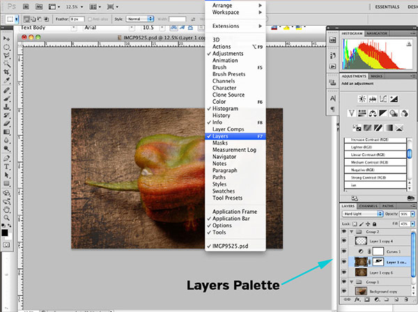 Introduction to Photoshop Layers