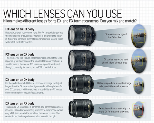 Which Lenses can you use