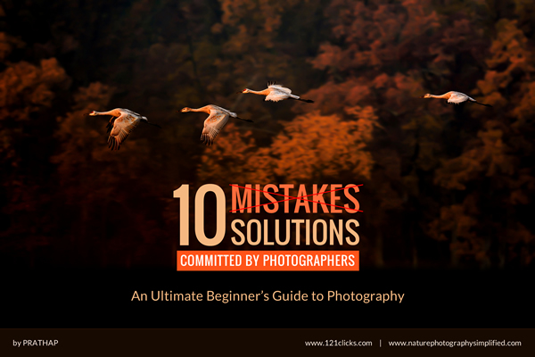 10 Mistakes & Solutions - An Ultimate Beginner's Guide to Photography