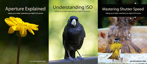 Aperture, ISO and Shutter Speed