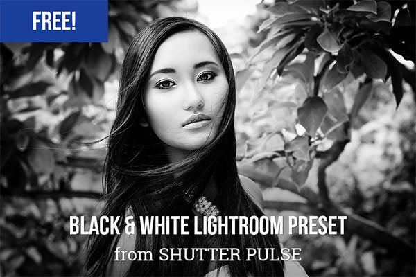 Black & White Lightroom Preset