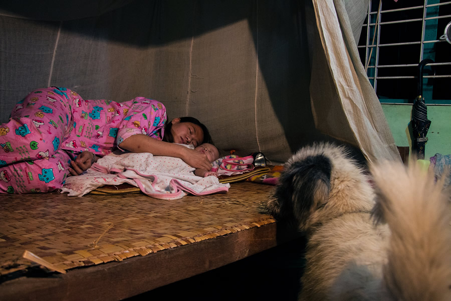 A New Family - Photo Story By Myanmar Photographer Sai Htin Linn Htet