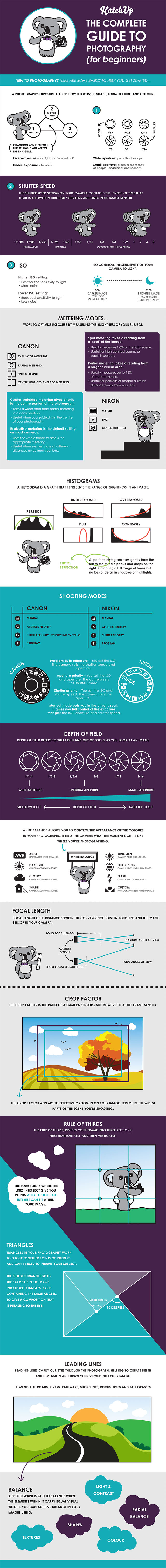 The Complete Guide To Photography - Useful Infographic For Beginners