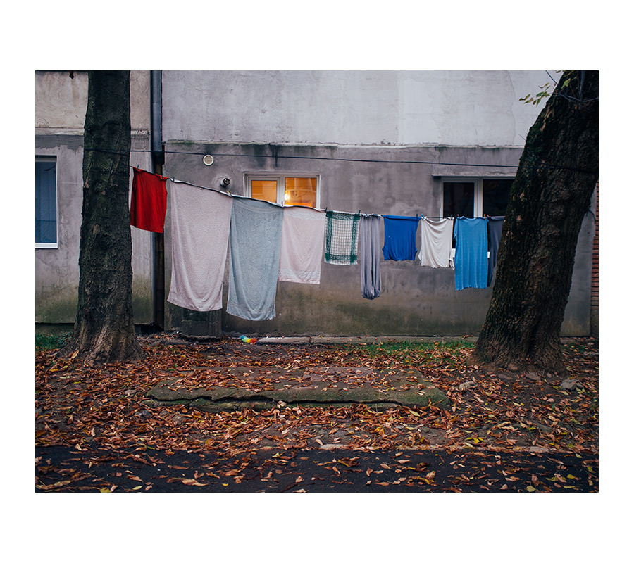 Hajdu Tamás - This Romanian Is A Vet Who Finds Such High Art In His Daily Mundane Life
