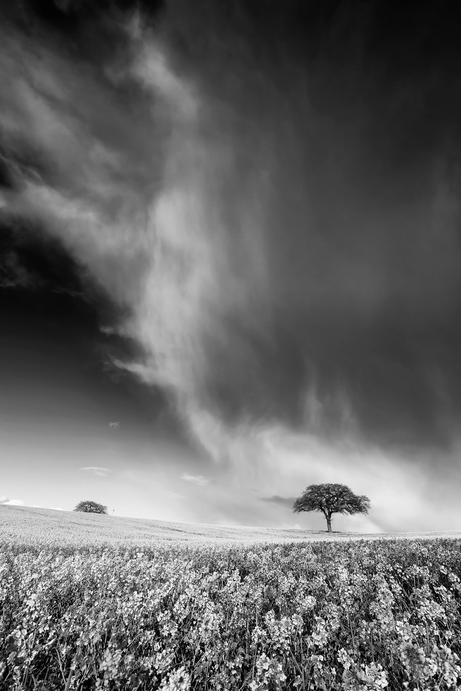 Expert 9th: 'Passing Storm' by Kathy Medcalf - Location: Nottinghamshire, England