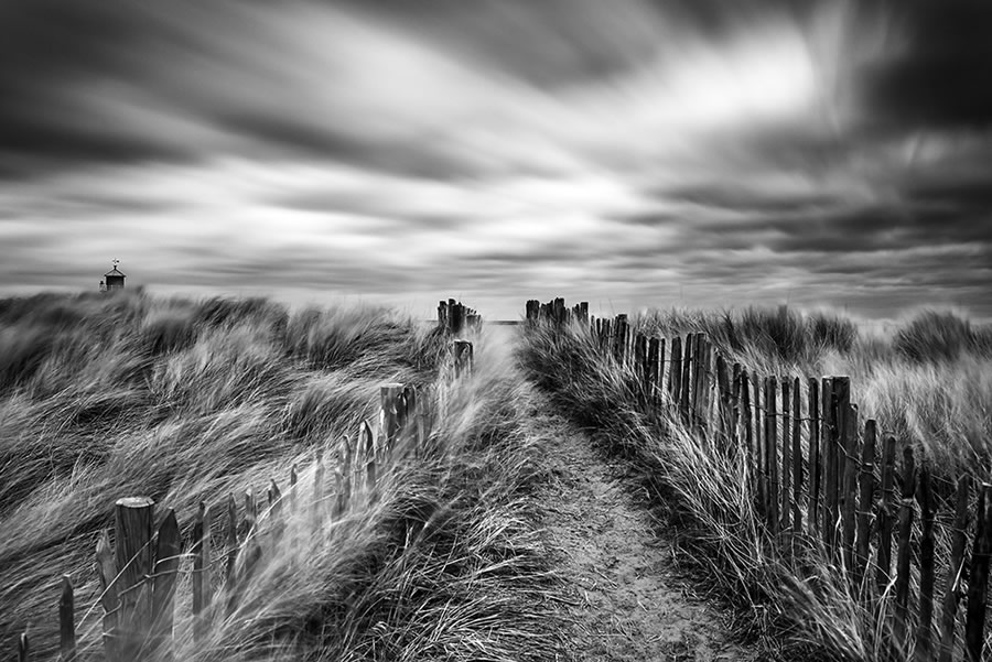 Crowd 9th: 'Lead the way' by David Ball - Location: North-East England