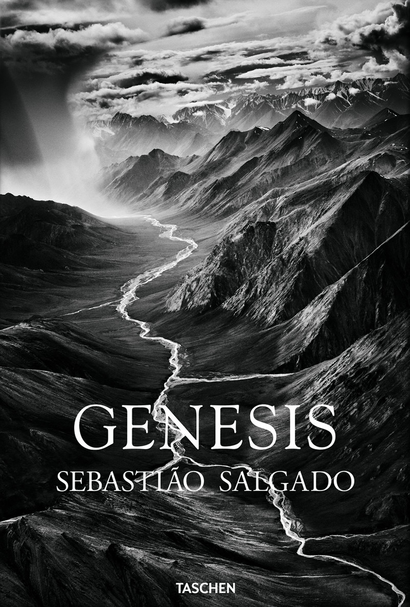 The Book Named 'Genesis' Is Actually About Our Conclusion