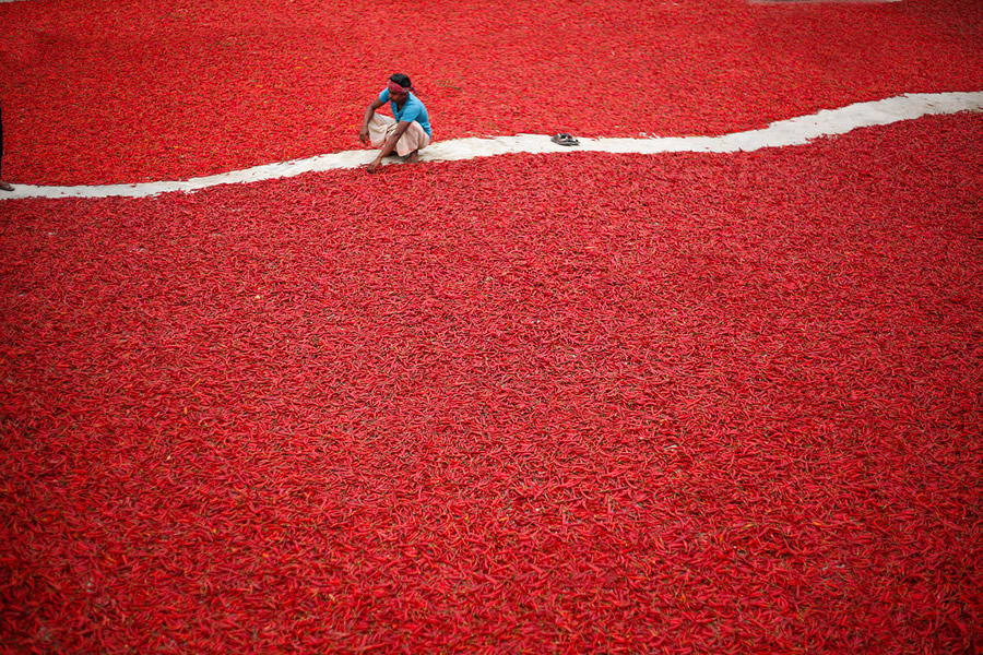 Chilli, Bangladesh - Best Top Photos on 121 Clicks Flickr Group