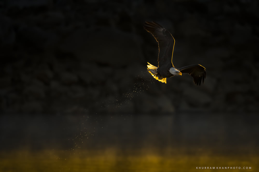 Interview With Nature Photographer Khurram Khan