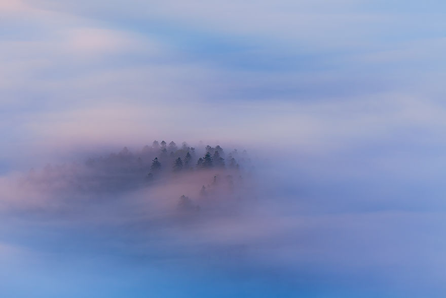 Photographer Magda Chudzik Captures Beautiful Photos Of Morning Fog