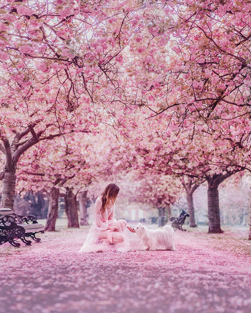 Greenwich Park, London, UK. Model: Svetlana