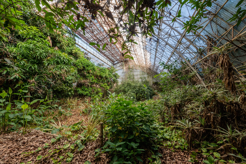Sonatine - Abandoned Places In Japan: Photo Series By Romain Veillon