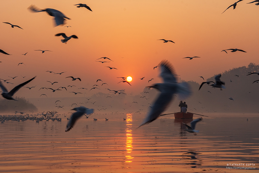 Migratory Bustle At Yamuna Ghat: Photo Series By Yatharth Gupta