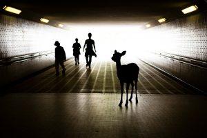 My Personal Best: Italian Street Photographer Andrea Rossi