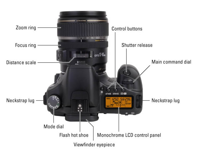 DSLR Camera Controls on the Top