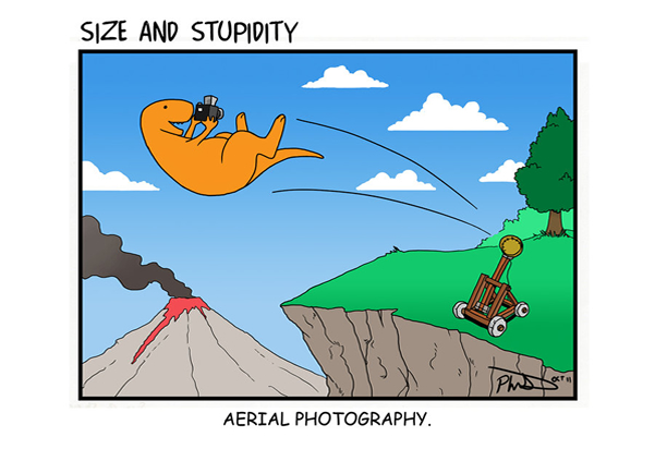 Funny Photography Comics and Cartoons