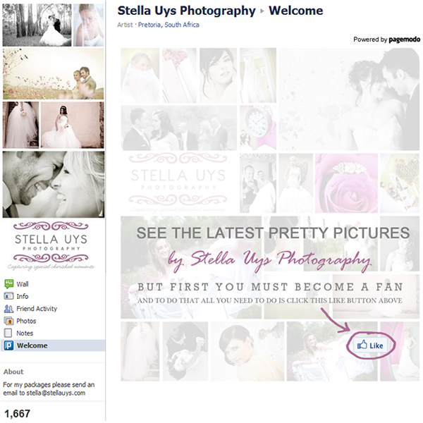Stella Uys Photography