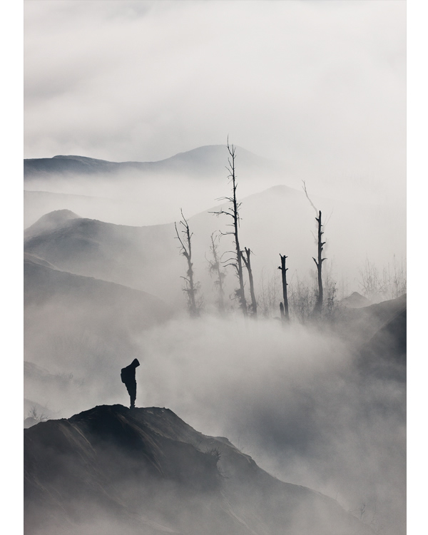 Lonely - Photography Composition